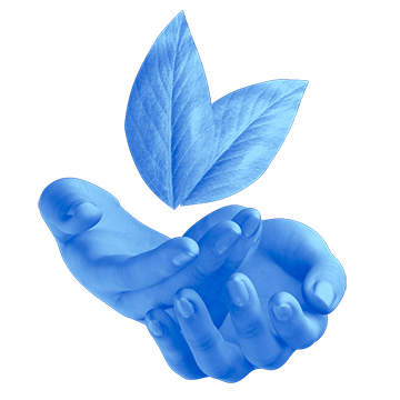 An icon of two lightly clasped hands, palms facing upwards towards two floating leaves
