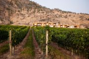 Must-dos in the Okanagan Valley